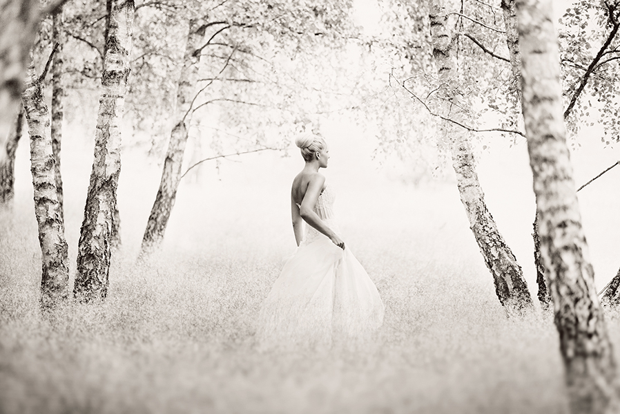 Skåne - Erika Gerdemark Photography 1